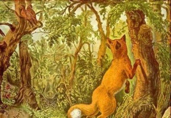 Сказка леса