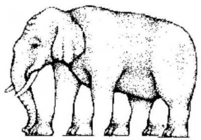 Многоногий слон