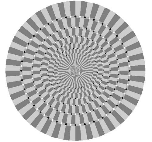 Серая спираль