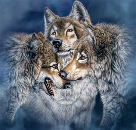 Призрак волка