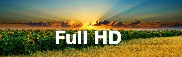 Форматы HD DVD и Blu-ray, что это?