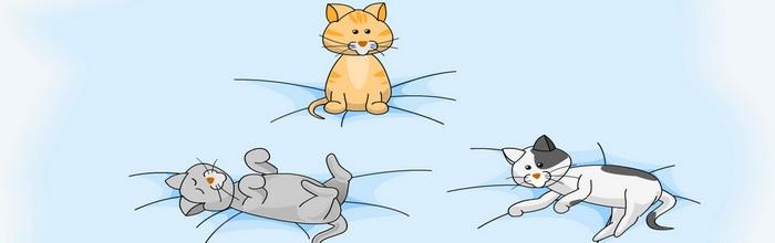 Пощекочи котят