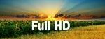 Форматы HD DVD и Blu-ray